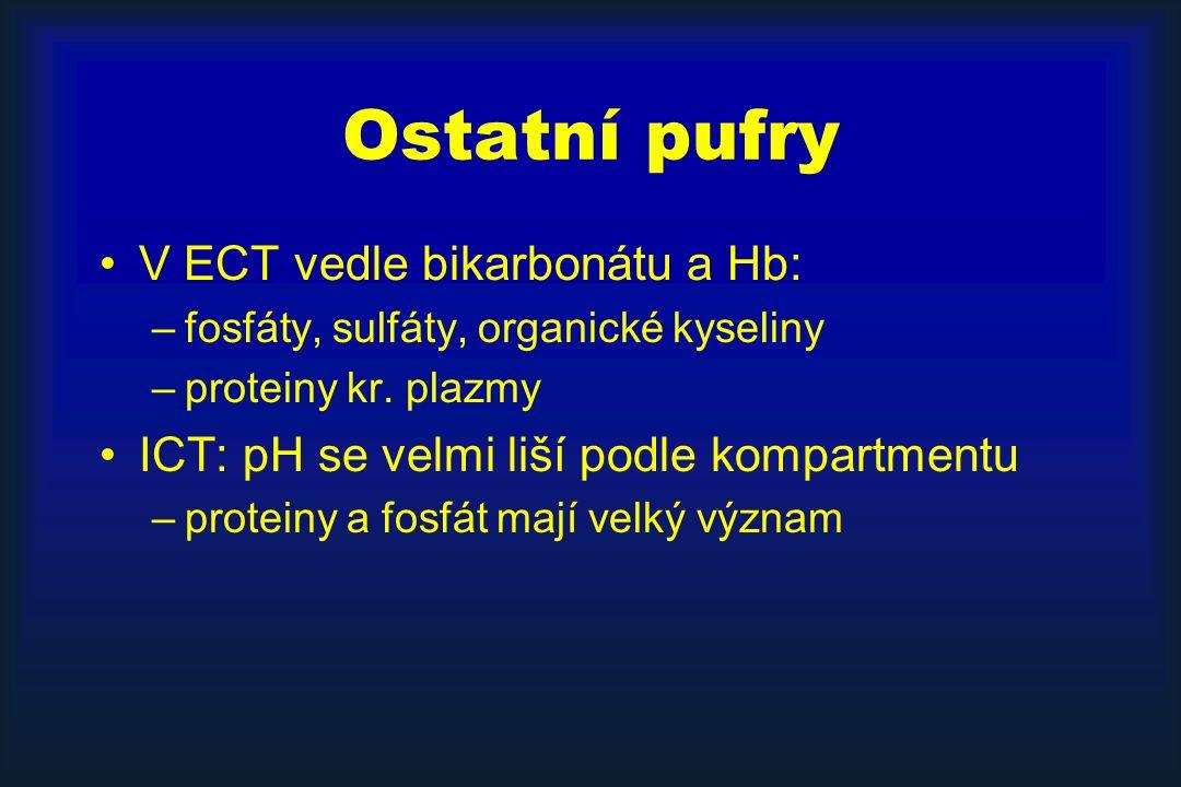 Ostatní pufry V ECT vedle bikarbonátu a Hb: –fosfáty, sulfáty, organické kyseliny –proteiny kr.