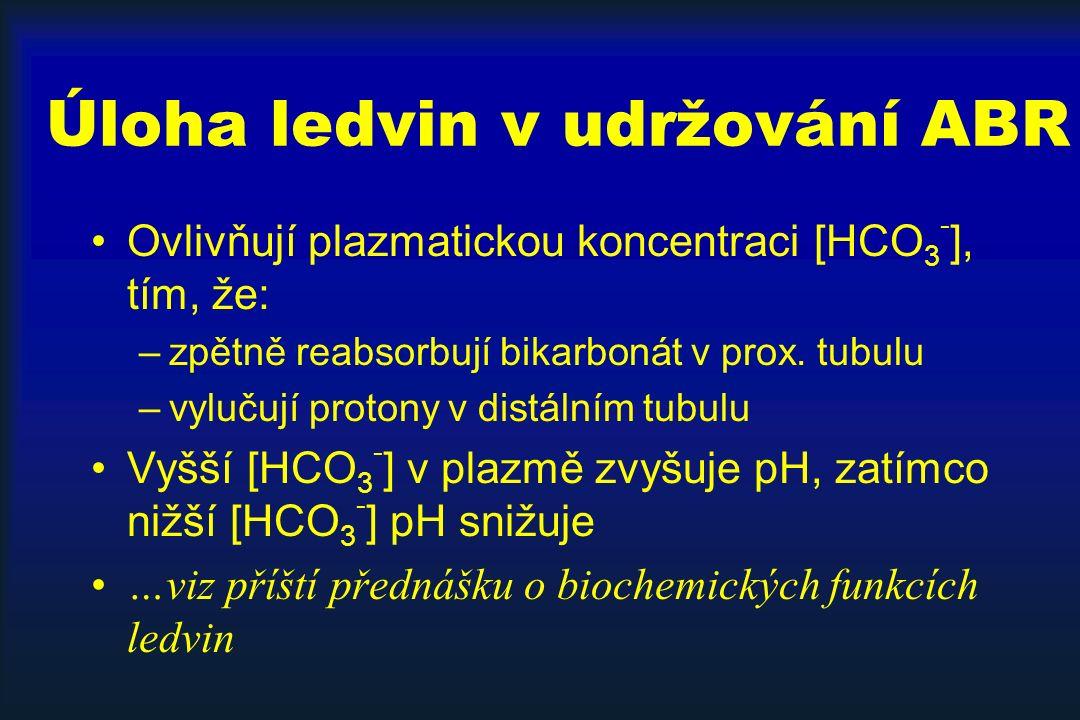 Úloha ledvin v udržování ABR Ovlivňují plazmatickou koncentraci [HCO 3 - ], tím, že: –zpětně reabsorbují bikarbonát v prox.