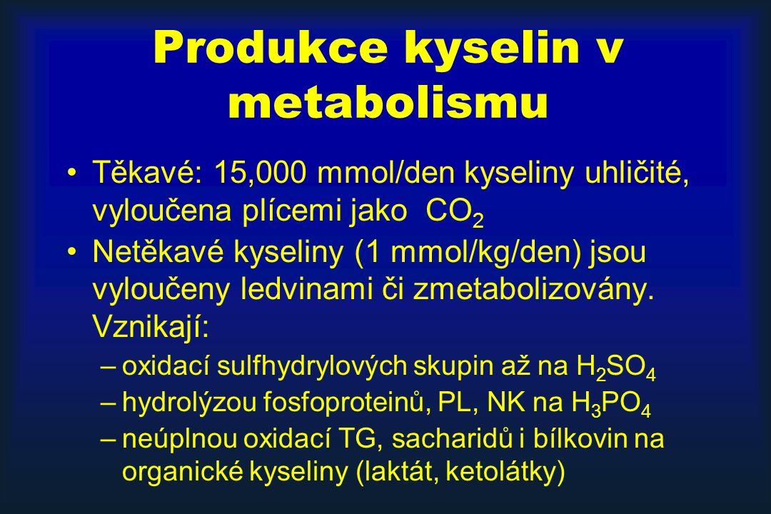 Produkce kyselin v metabolismu Těkavé: 15,000 mmol/den kyseliny uhličité, vyloučena plícemi jako CO 2 Netěkavé kyseliny (1 mmol/kg/den) jsou vyloučeny ledvinami či zmetabolizovány.
