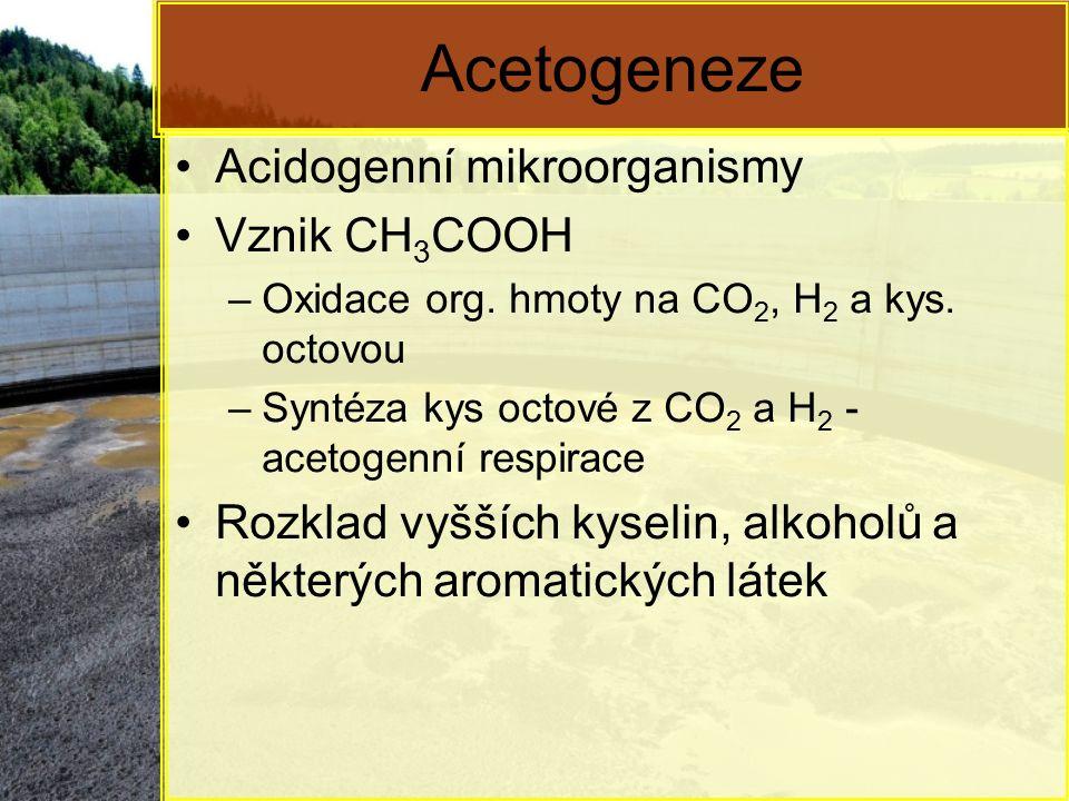 Acetogeneze Acidogenní mikroorganismy Vznik CH 3 COOH –Oxidace org. hmoty na CO 2, H 2 a kys. octovou –Syntéza kys octové z CO 2 a H 2 - acetogenní re