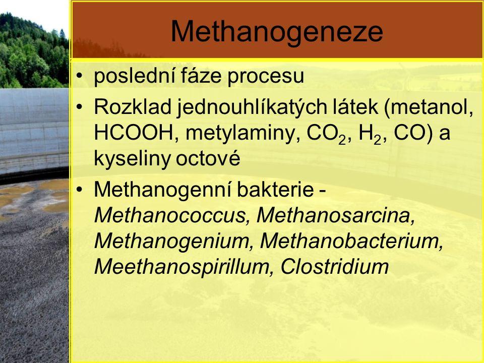 Methanogeneze poslední fáze procesu Rozklad jednouhlíkatých látek (metanol, HCOOH, metylaminy, CO 2, H 2, CO) a kyseliny octové Methanogenní bakterie - Methanococcus, Methanosarcina, Methanogenium, Methanobacterium, Meethanospirillum, Clostridium