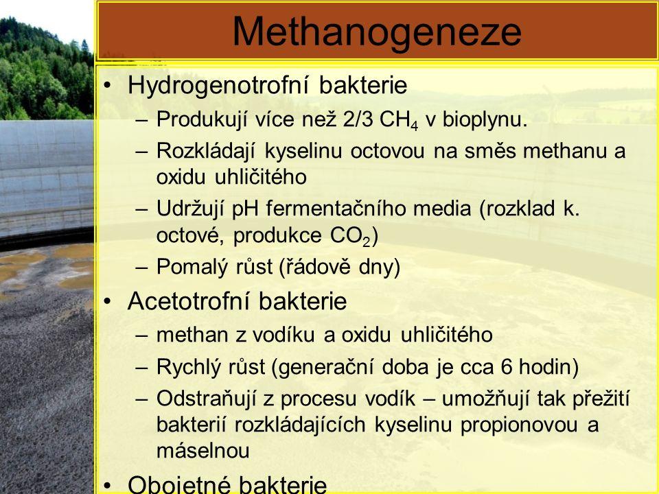 Methanogeneze Hydrogenotrofní bakterie –Produkují více než 2/3 CH 4 v bioplynu. –Rozkládají kyselinu octovou na směs methanu a oxidu uhličitého –Udržu