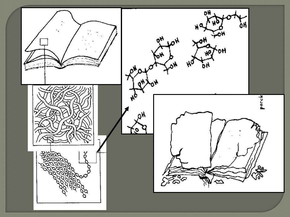 Kyselá hydrolýza Rozklad chemických vazeb p ů sobením vody.
