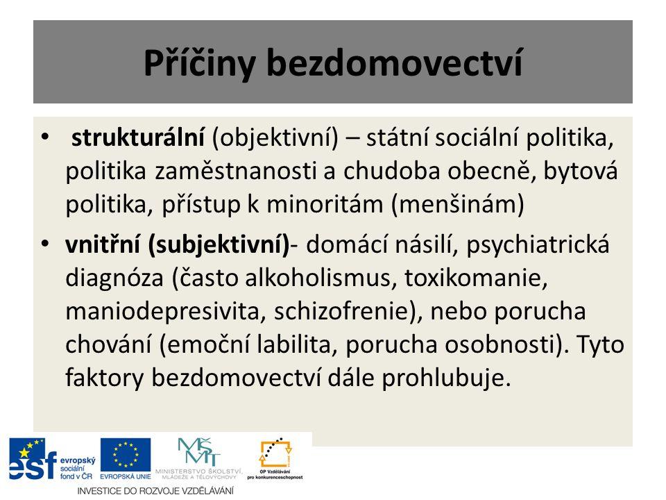 Příčiny bezdomovectví strukturální (objektivní) – státní sociální politika, politika zaměstnanosti a chudoba obecně, bytová politika, přístup k minori