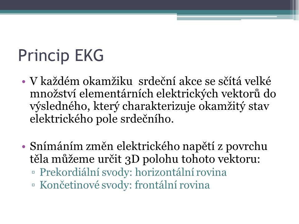 Princip EKG V každém okamžiku srdeční akce se sčítá velké množství elementárních elektrických vektorů do výsledného, který charakterizuje okamžitý stav elektrického pole srdečního.