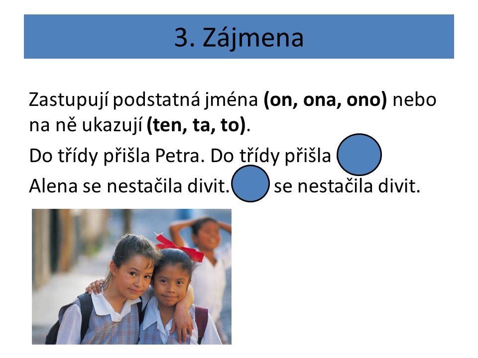3. Zájmena Zastupují podstatná jména (on, ona, ono) nebo na ně ukazují (ten, ta, to).