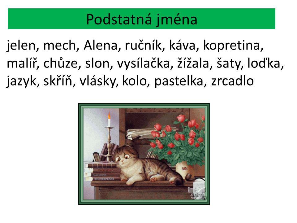 2.Přídavná jména Vyjadřují vlastnosti osob, zvířat a věcí.