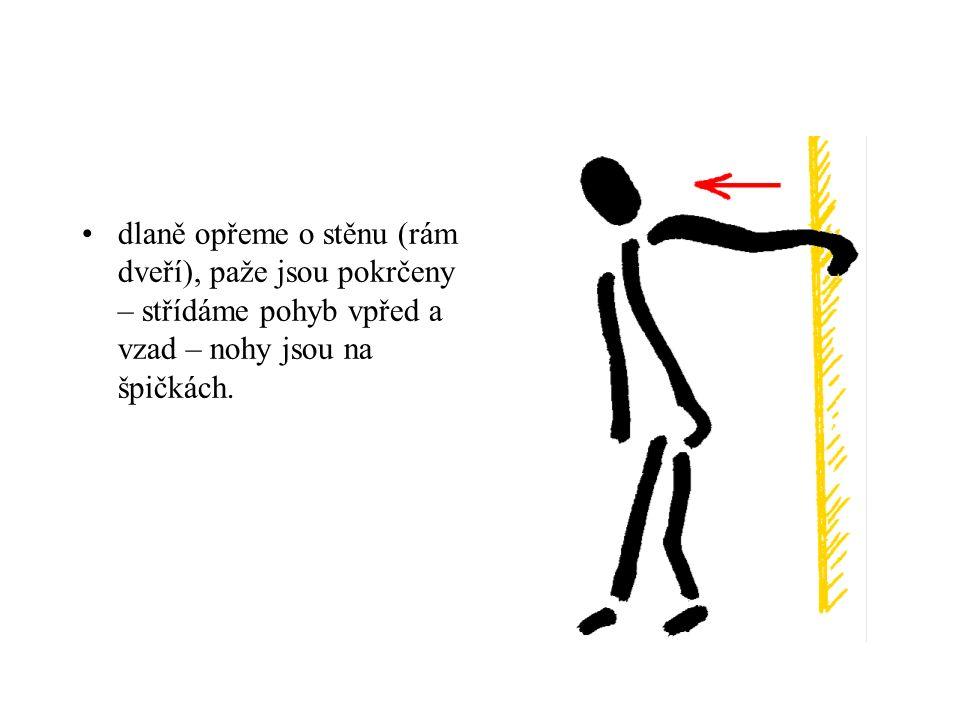 dlaně opřeme o stěnu (rám dveří), paže jsou pokrčeny – střídáme pohyb vpřed a vzad – nohy jsou na špičkách.