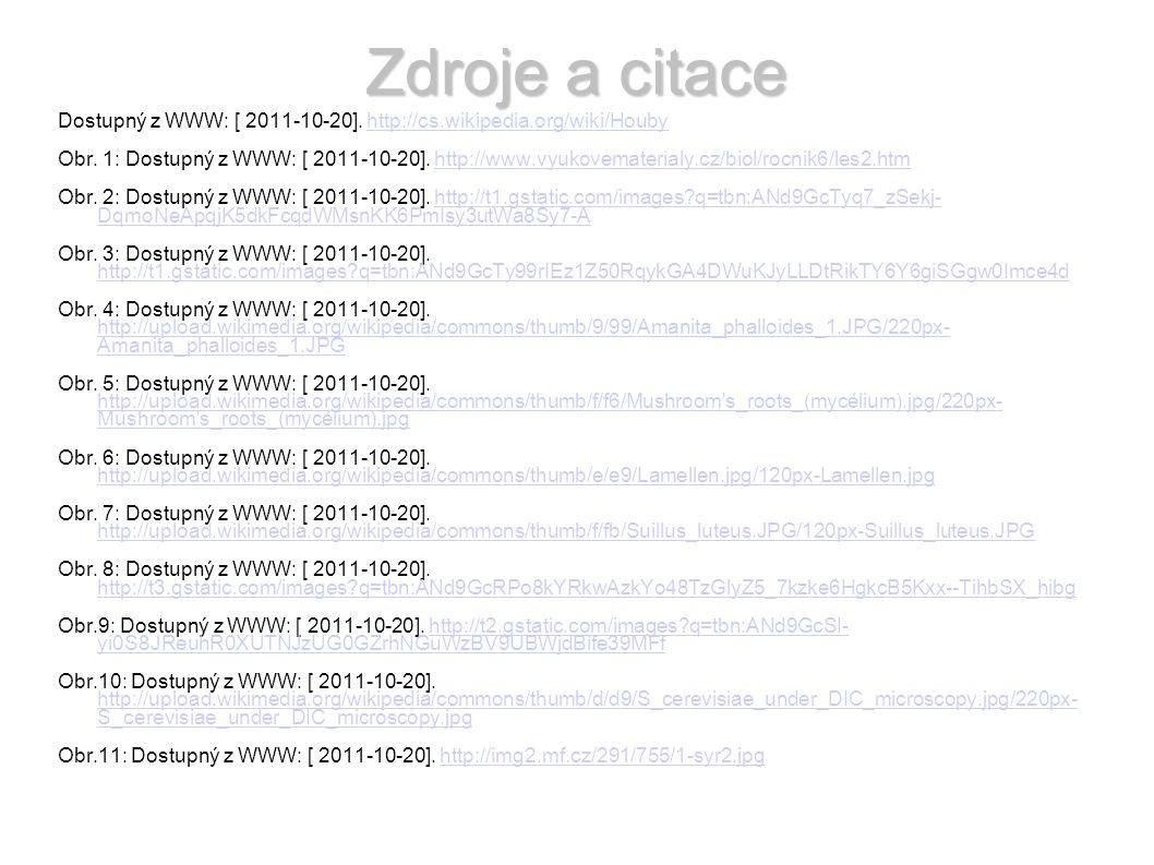 Zdroje a citace Dostupný z WWW: [ 2011-10-20].