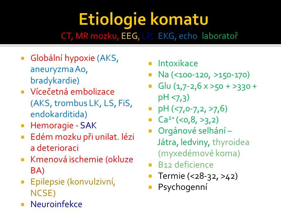  Globální hypoxie (AKS, aneuryzma Ao, bradykardie)  Vícečetná embolizace (AKS, trombus LK, LS, FiS, endokarditida)  Hemoragie - SAK  Edém mozku při unilat.