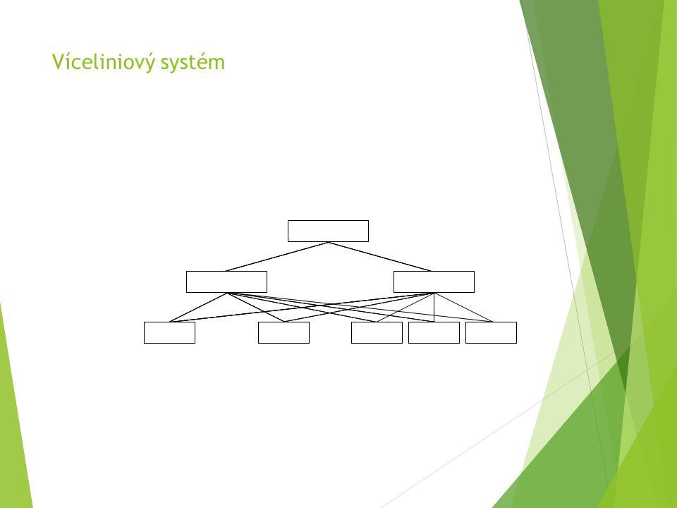 Víceliniový systém
