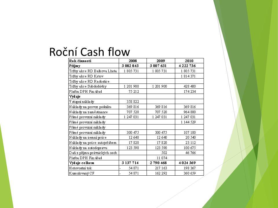 Roční Cash flow