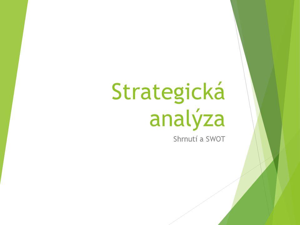 Strategická analýza Shrnutí a SWOT