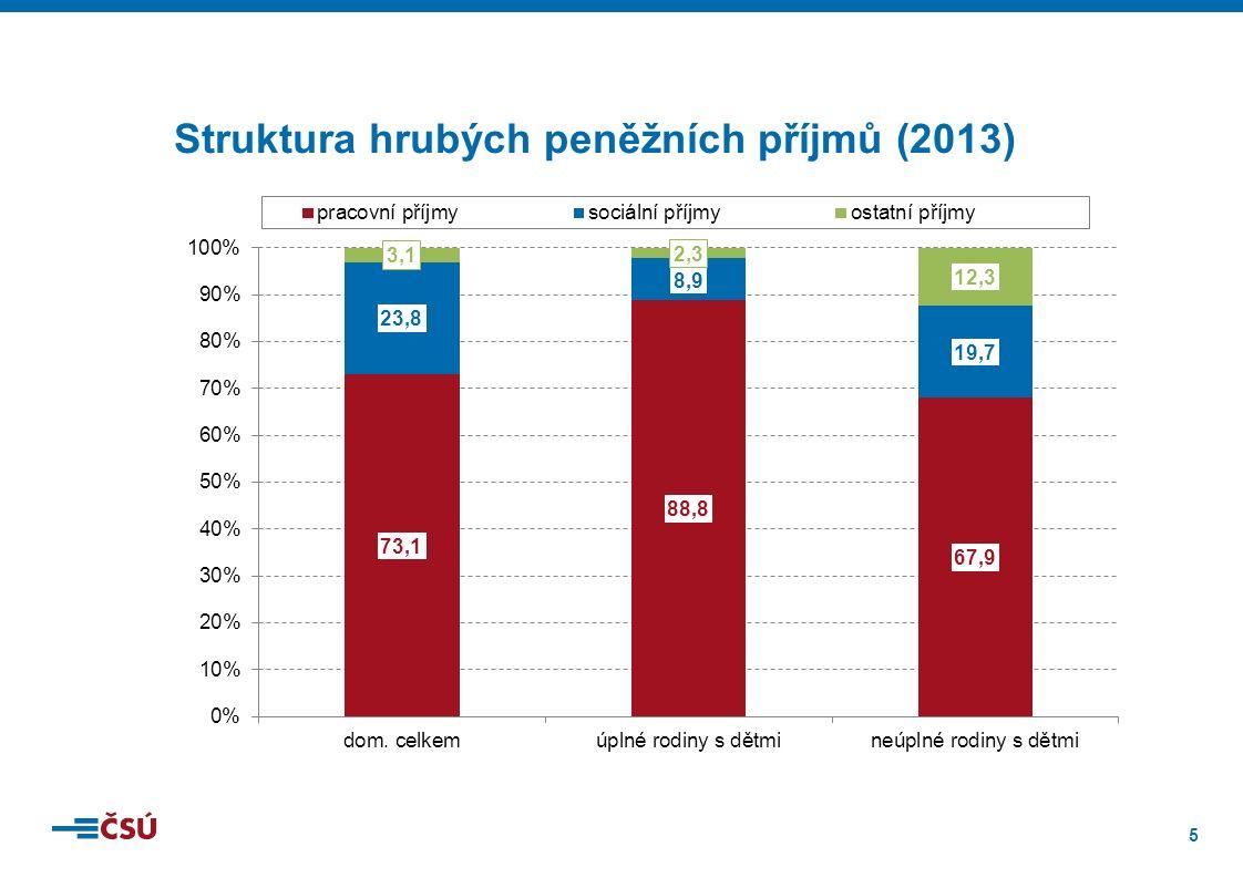 16 Podíly domácností, které si nemohou dovolit zaplatit dětem* vybrané předměty (2014) Pozn.: *děti do 16 let
