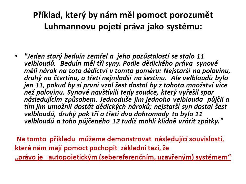Jak chápe Luhmann systém.
