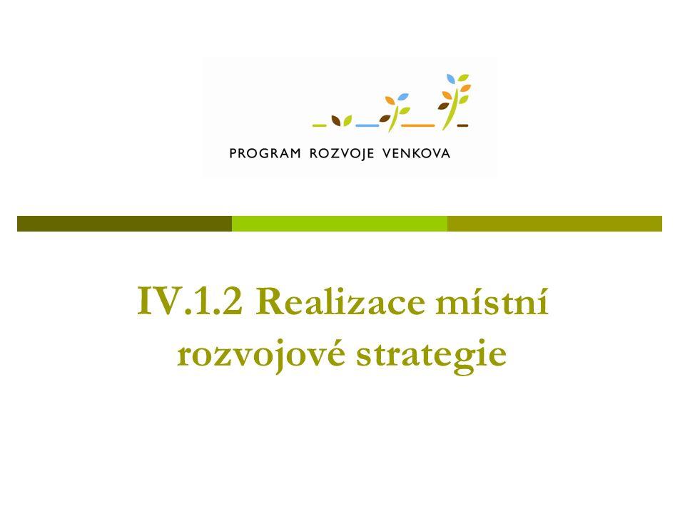 IV.1.2 Realizace místní rozvojové strategie