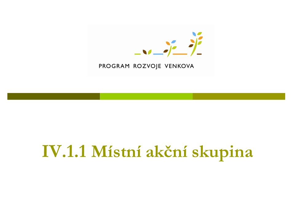 IV.1.1 Místní akční skupina