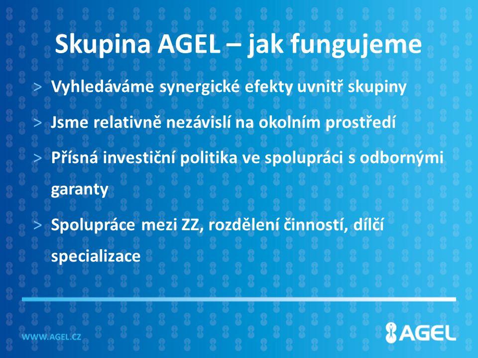 Skupina AGEL – jak fungujeme >Vyhledáváme synergické efekty uvnitř skupiny >Jsme relativně nezávislí na okolním prostředí >Přísná investiční politika ve spolupráci s odbornými garanty >Spolupráce mezi ZZ, rozdělení činností, dílčí specializace