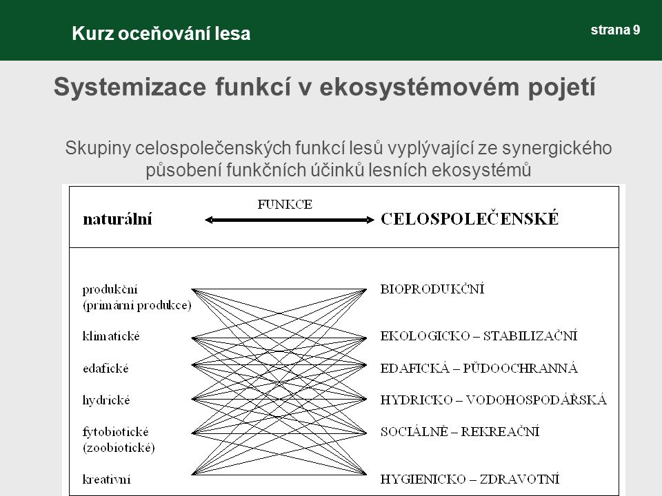strana 9 Systemizace funkcí v ekosystémovém pojetí Skupiny celospolečenských funkcí lesů vyplývající ze synergického působení funkčních účinků lesních ekosystémů Kurz oceňování lesa