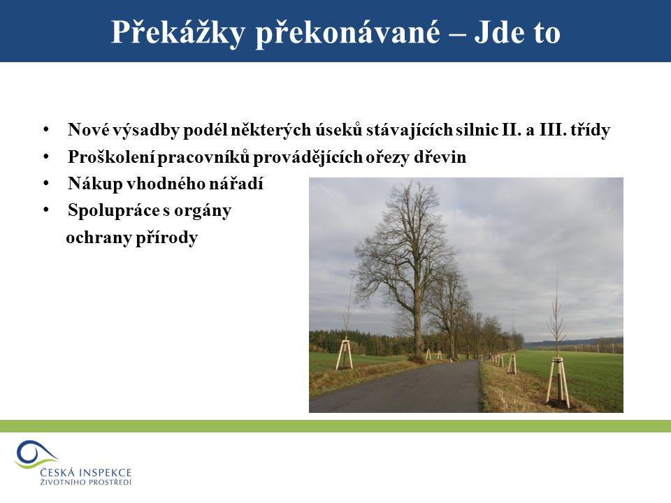 Překážky překonávané – Jde to Nové výsadby podél některých úseků stávajících silnic II.