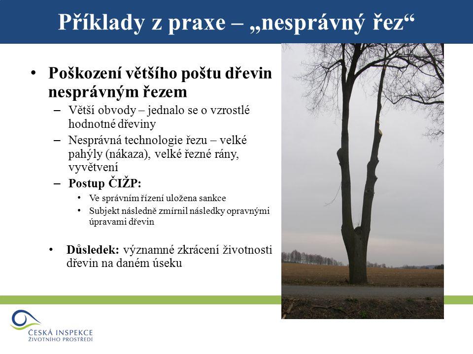 """Příklady z praxe – """"hloubení příkopu Hloubení příkopu – Poškození kořenových systémů dřevin – Postup ČIŽP: Ve správním řízení uložena sankce Důsledek: významné zkrácení životnosti dřevin na daném úseku"""