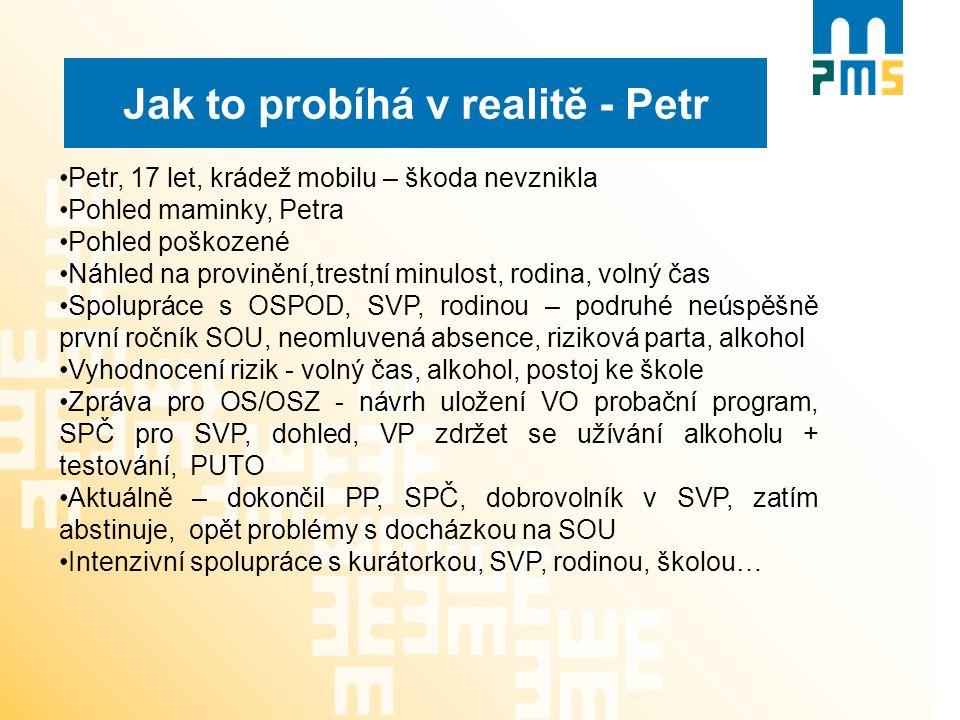 Jak to probíhá v realitě - Petr Petr, 17 let, krádež mobilu – škoda nevznikla Pohled maminky, Petra Pohled poškozené Náhled na provinění,trestní minul