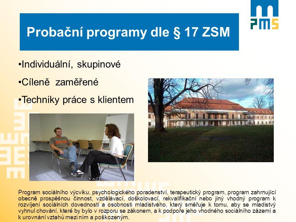 Probační programy dle § 17 ZSM Individuální, skupinové Cíleně zaměřené Techniky práce s klientem Program sociálního výcviku, psychologického poradenst