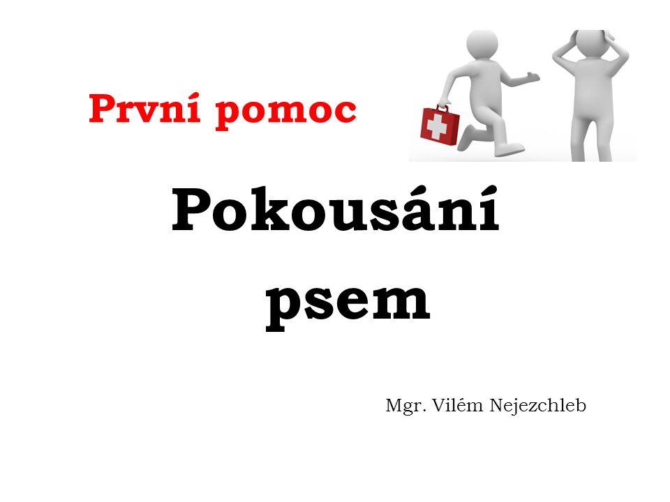 www.ceskenoviny.cz