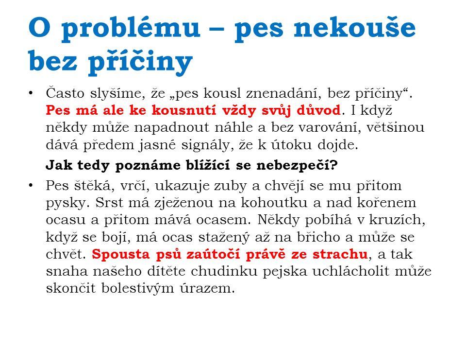 www.celysvet.cz