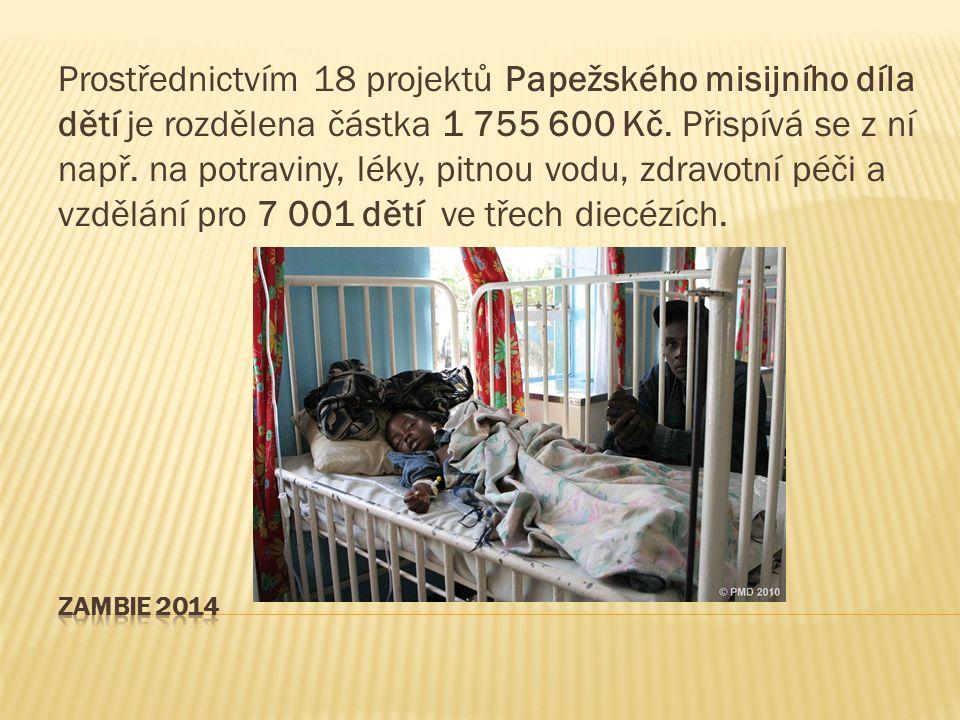 Prostřednictvím 18 projektů Papežského misijního díla dětí je rozdělena částka 1 755 600 Kč.