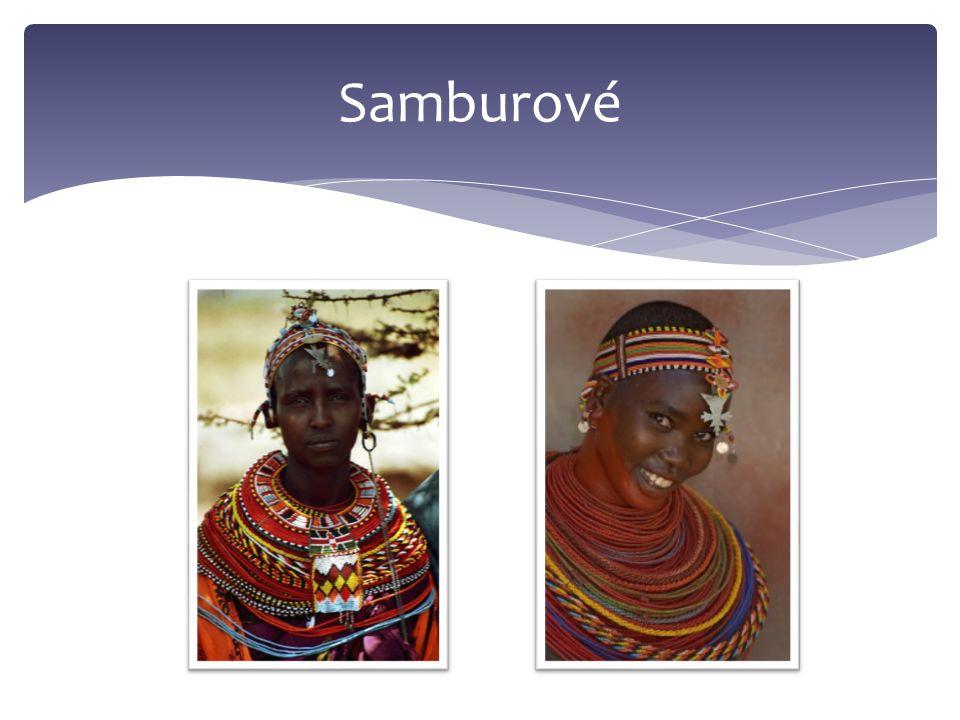 Samburové