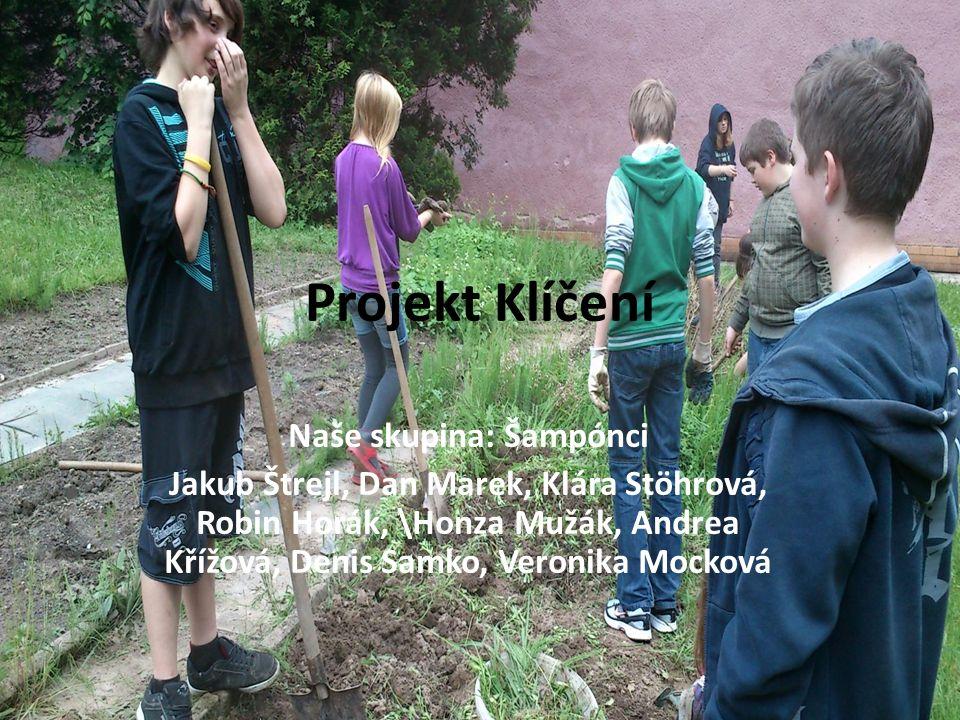 Naše skupina: Šampónci Jakub Štrejl, Dan Marek, Klára Stöhrová, Robin Horák, \Honza Mužák, Andrea Křížová, Denis Samko, Veronika Mocková Projekt Klíčení