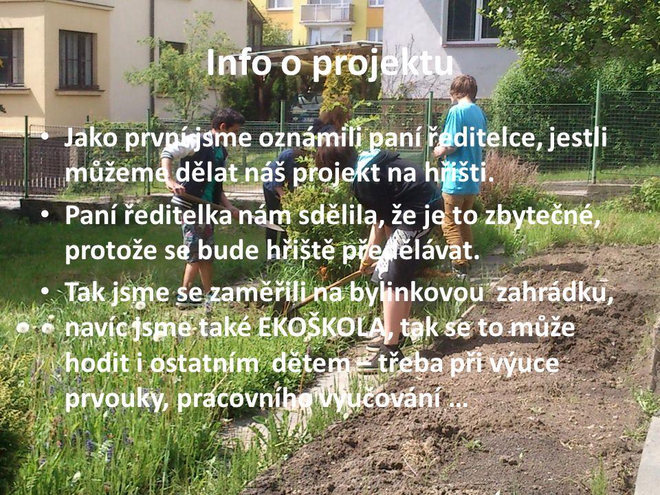 Info o projektu Jako první jsme oznámili paní ředitelce, jestli můžeme dělat náš projekt na hřišti.