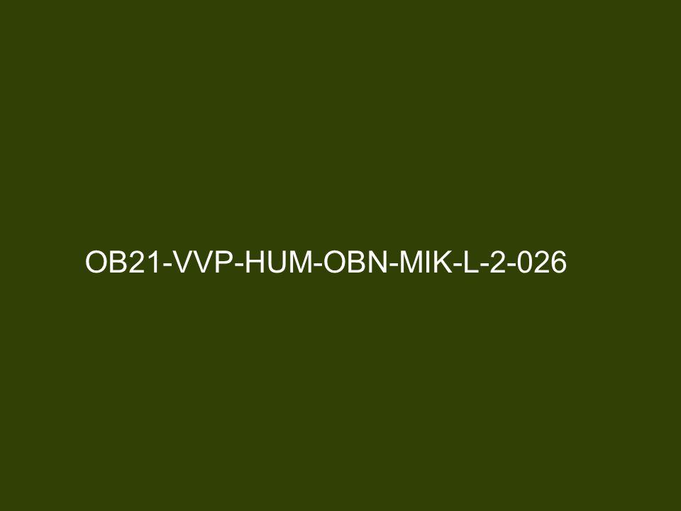 OB21-VVP-HUM-OBN-MIK-L-2-026