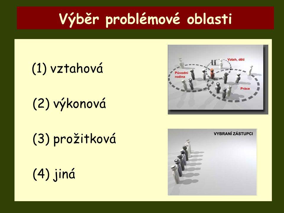 (1) vztahová (2) výkonová (3) prožitková (4) jiná Výběr problémové oblasti