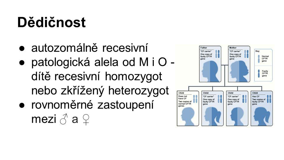 Dědičnost ●autozomálně recesivní ●patologická alela od M i O - dítě recesivní homozygot nebo zkřížený heterozygot ●rovnoměrné zastoupení mezi ♂ a ♀
