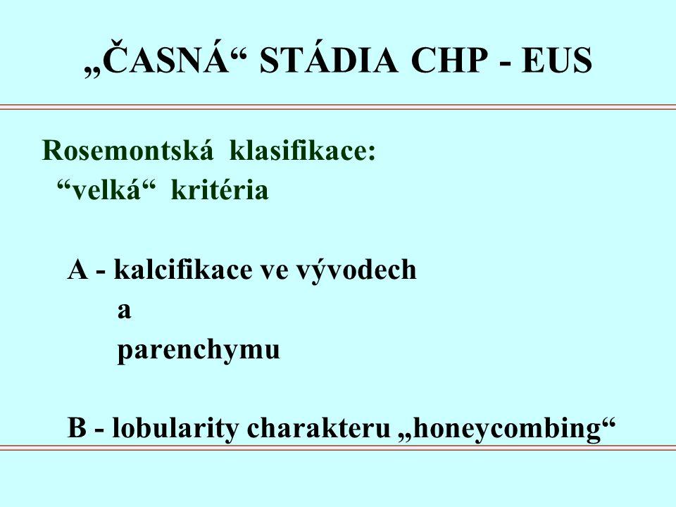 """""""ČASNÁ STÁDIA CHP - EUS Rosemontská klasifikace: velká kritéria A - kalcifikace ve vývodech a parenchymu B - lobularity charakteru """"honeycombing"""