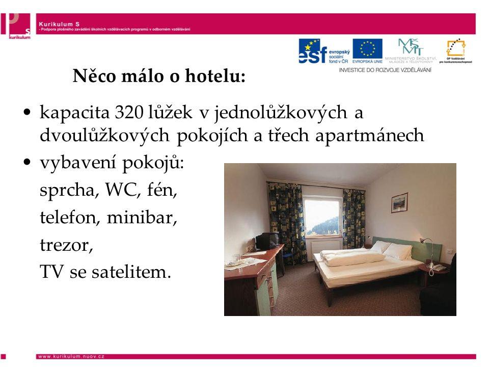 Něco málo o hotelu: kapacita 320 lůžek v jednolůžkových a dvoulůžkových pokojích a třech apartmánech vybavení pokojů: sprcha, WC, fén, telefon, minibar, trezor, TV se satelitem.