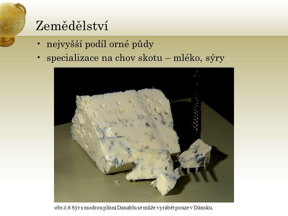 Zemědělství nejvyšší podíl orné půdy specializace na chov skotu – mléko, sýry obr.č.6 Sýr s modrou plísní Danablu se může vyrábět pouze v Dánsku.