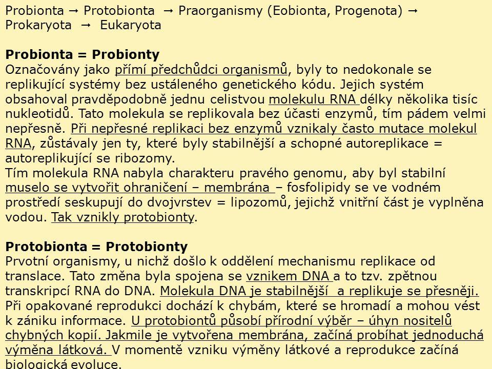 Probionta  Protobionta  Praorganismy (Eobionta, Progenota)  Prokaryota  Eukaryota Probionta = Probionty Označovány jako přímí předchůdci organismů, byly to nedokonale se replikující systémy bez ustáleného genetického kódu.