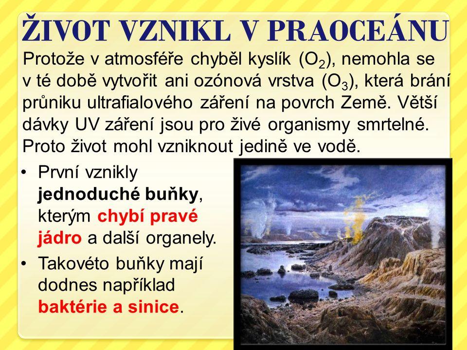 Protože v atmosféře chyběl kyslík (O 2 ), nemohla se v té době vytvořit ani ozónová vrstva (O 3 ), která brání průniku ultrafialového záření na povrch
