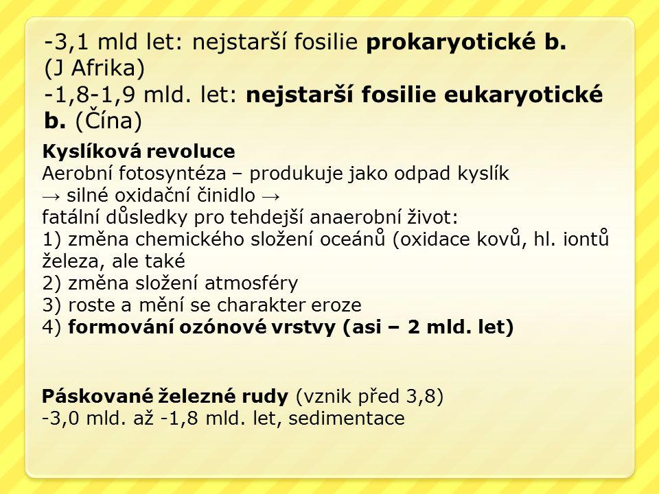 -3,1 mld let: nejstarší fosilie prokaryotické b. (J Afrika) -1,8-1,9 mld. let: nejstarší fosilie eukaryotické b. (Čína) Kyslíková revoluce Aerobní fot