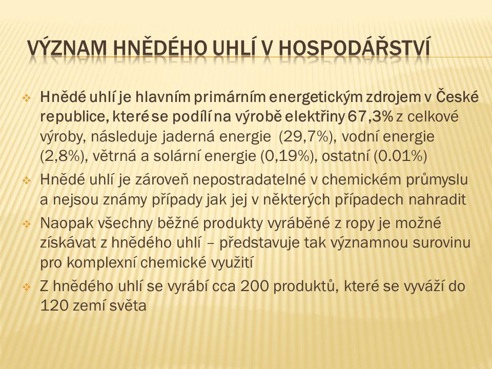  Hnědé uhlí je hlavním primárním energetickým zdrojem v České republice, které se podílí na výrobě elektřiny 67,3% z celkové výroby, následuje jaderná energie (29,7%), vodní energie (2,8%), větrná a solární energie (0,19%), ostatní (0.01%)  Hnědé uhlí je zároveň nepostradatelné v chemickém průmyslu a nejsou známy případy jak jej v některých případech nahradit  Naopak všechny běžné produkty vyráběné z ropy je možné získávat z hnědého uhlí – představuje tak významnou surovinu pro komplexní chemické využití  Z hnědého uhlí se vyrábí cca 200 produktů, které se vyváží do 120 zemí světa