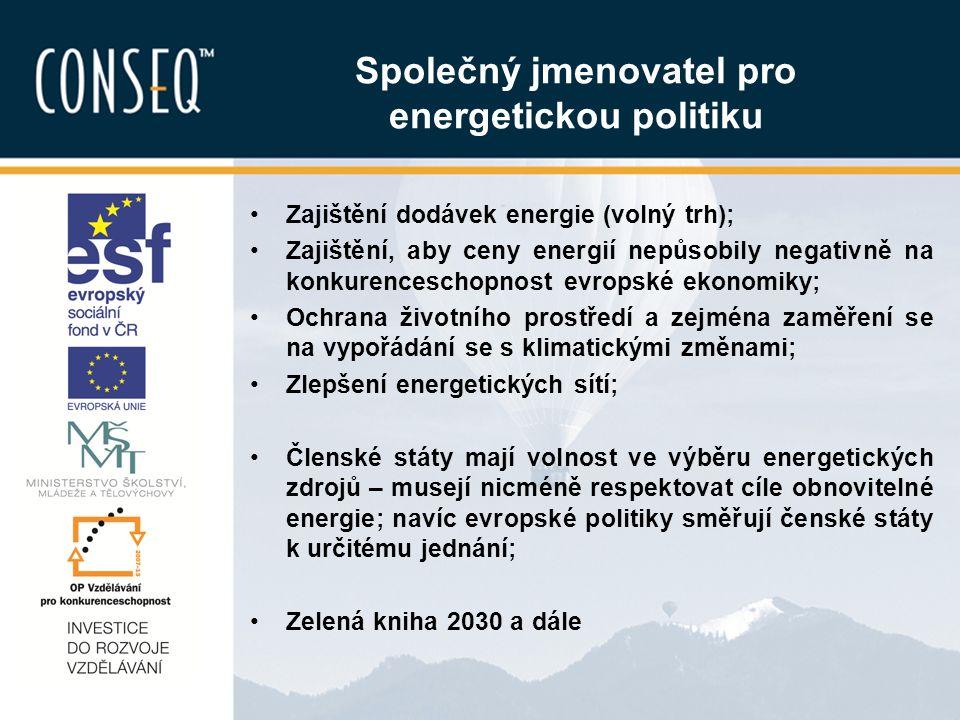 Společný jmenovatel pro energetickou politiku Zajištění dodávek energie (volný trh); Zajištění, aby ceny energií nepůsobily negativně na konkurenceschopnost evropské ekonomiky; Ochrana životního prostředí a zejména zaměření se na vypořádání se s klimatickými změnami; Zlepšení energetických sítí; Členské státy mají volnost ve výběru energetických zdrojů – musejí nicméně respektovat cíle obnovitelné energie; navíc evropské politiky směřují čenské státy k určitému jednání; Zelená kniha 2030 a dále