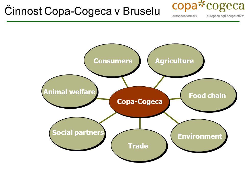  Ochraňovat všeobecné zájmy zemědělců  Udržovat a rozvíjet vztahy s evropskými institucemi  Hledání společných řešení Činnost Copa-Cogeca v Bruselu Poslání :