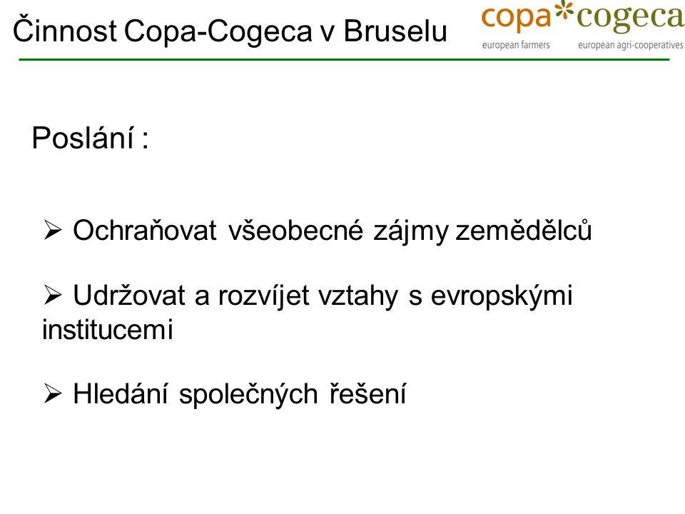  Ochraňovat všeobecné zájmy zemědělců  Udržovat a rozvíjet vztahy s evropskými institucemi  Hledání společných řešení Činnost Copa-Cogeca v Bruselu