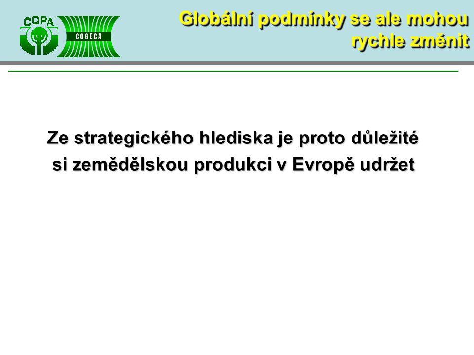 Ze strategického hlediska je proto důležité si zemědělskou produkci v Evropě udržet