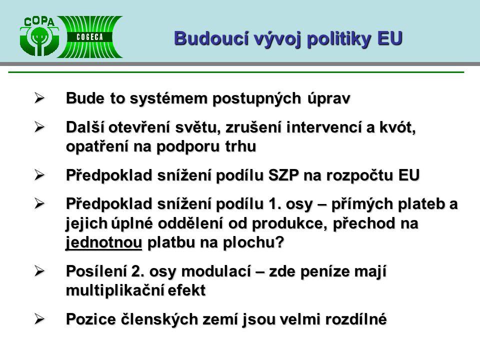 Budoucí vývoj politiky EU  Bude to systémem postupných úprav  Další otevření světu, zrušení intervencí a kvót, opatření na podporu trhu  Předpoklad