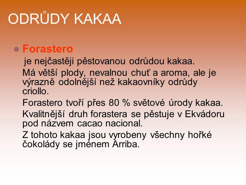 ODRŮDY KAKAA Forastero je nejčastěji pěstovanou odrůdou kakaa.