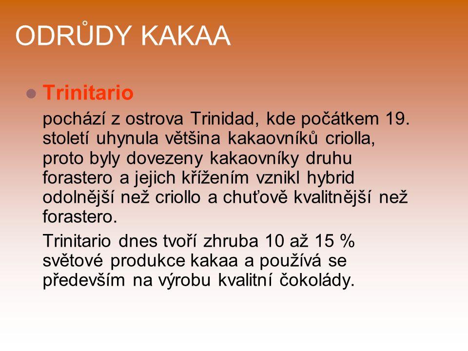 ODRŮDY KAKAA Trinitario pochází z ostrova Trinidad, kde počátkem 19.